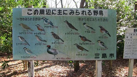 野鳥情報の看板