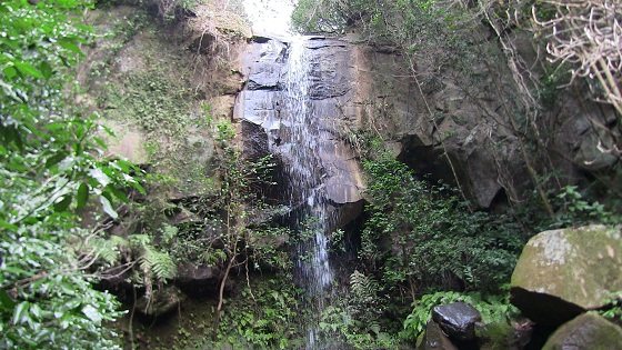 観音の滝(三島市)