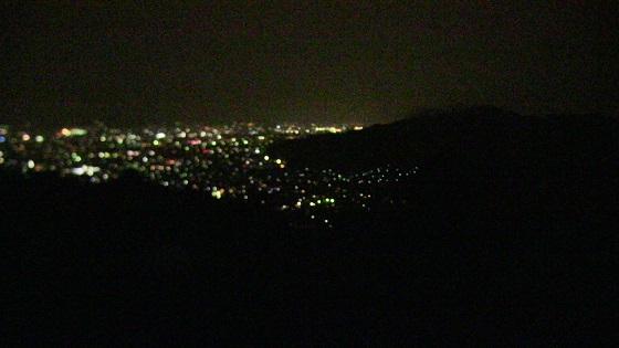 ワニの夜景