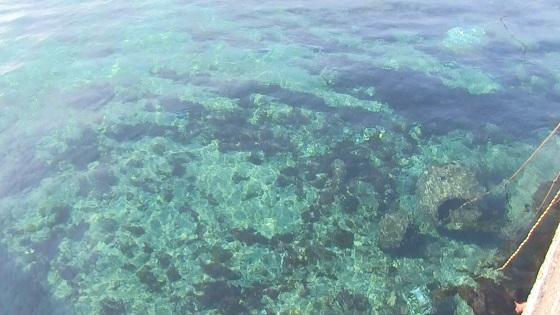 海水(2)