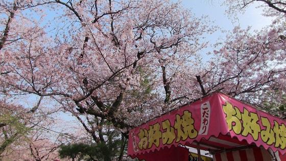桜×屋台(1)