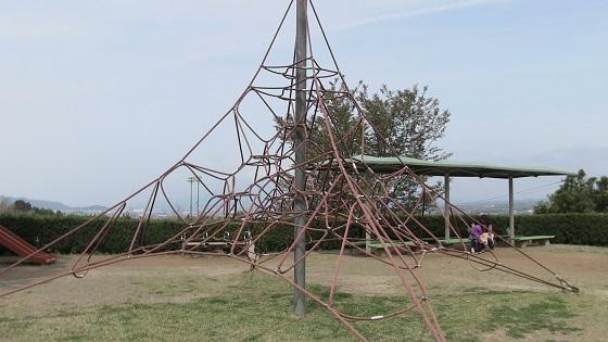 蜘蛛の巣ネット
