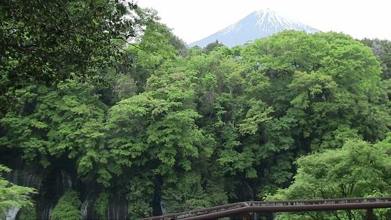 白糸の滝×富士山