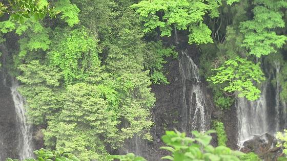 白糸の滝アップ