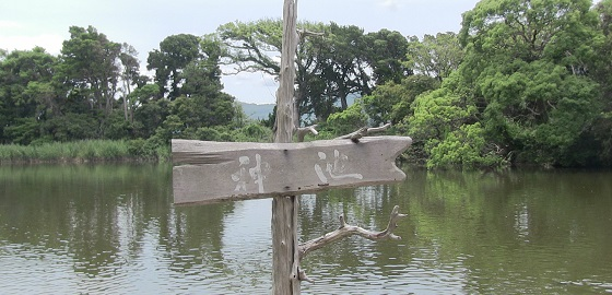 大瀬明神の神池