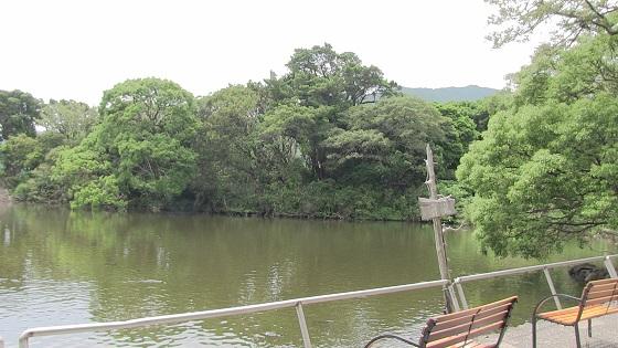 大瀬明神の神池&ベンチ画像