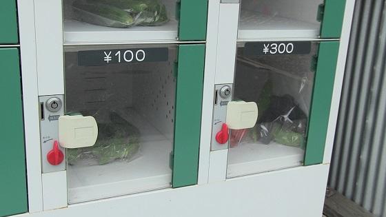 販売野菜(ロッカー)