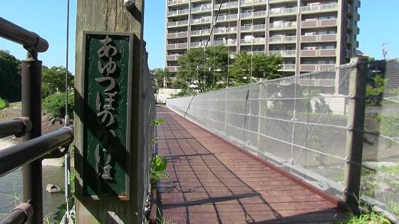 鮎壺のかけ橋