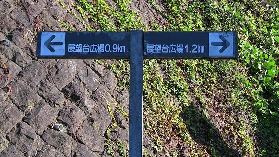 ハイキングコースの分かれ道