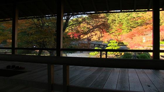 日本庭園×紅葉