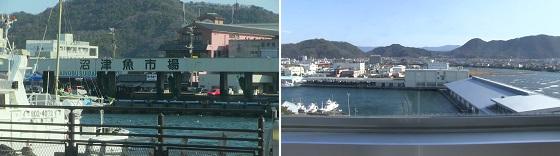 沼津魚市場・港町・香貫山