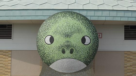 亀のトイレ