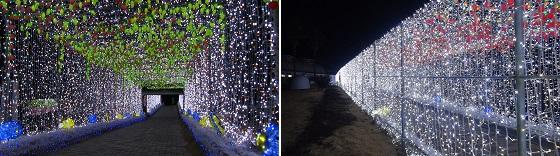 光のトンネル(白)