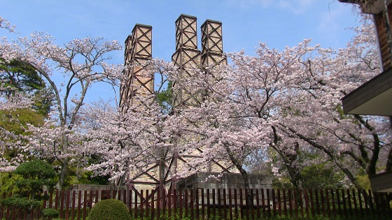 韮山反射炉×桜