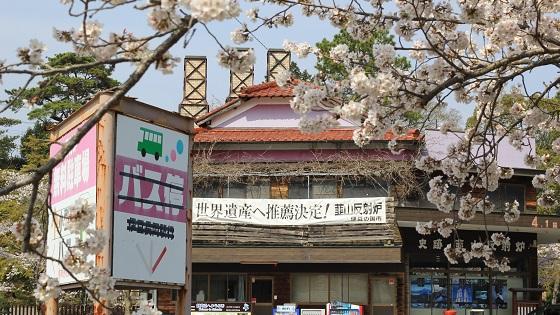 韮山反射炉受付付近と桜