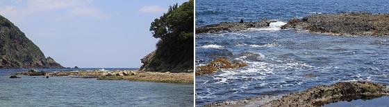 島周辺の磯(1)
