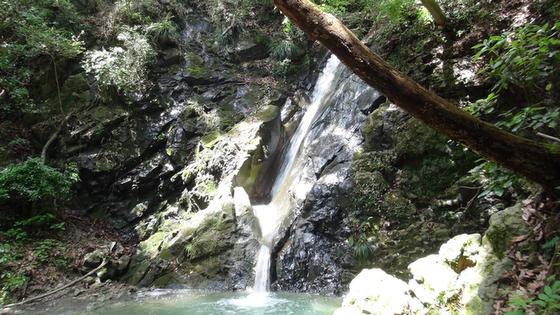 海老名の滝5
