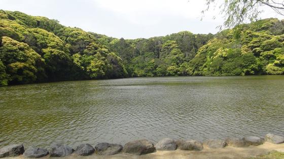 桜ヶ池画像1
