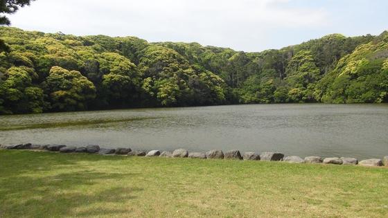 桜ヶ池画像3