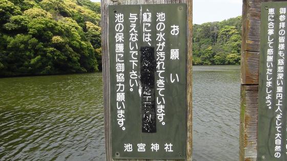 池の注意書き