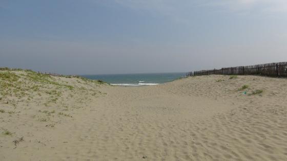 浜岡砂丘1