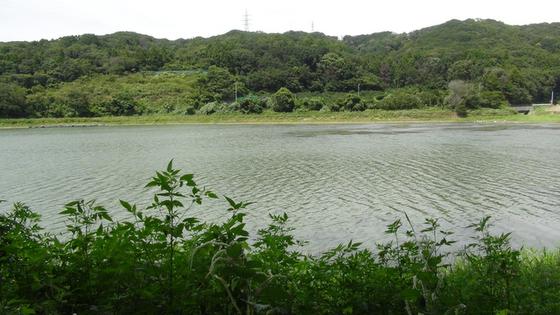 西大谷池1