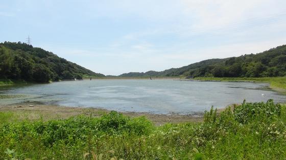 西大谷池2
