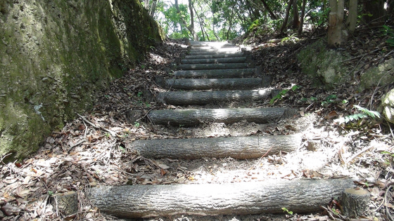 山中の階段
