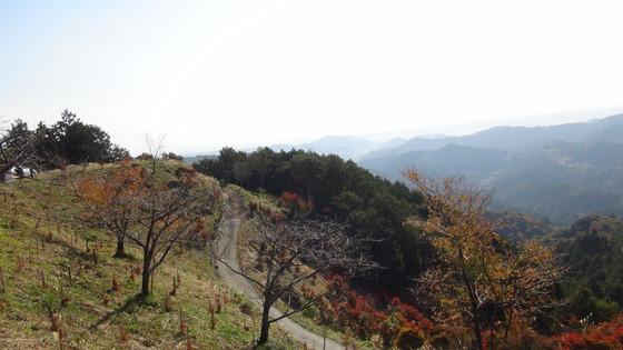 山の景色1