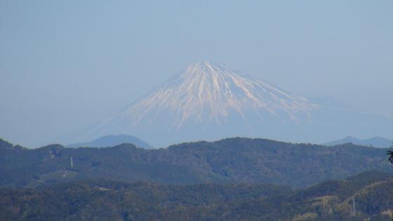 諏訪原城跡富士山1