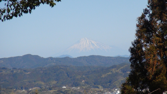 諏訪原城跡富士山2
