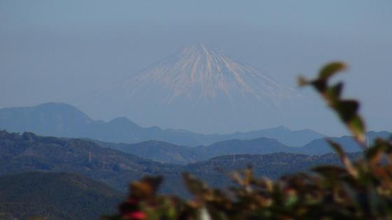 牧之原公園富士山1