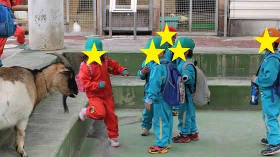 動物×子ども2