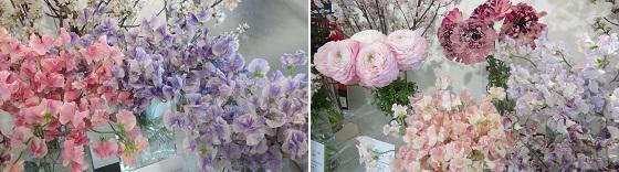 展示の花3